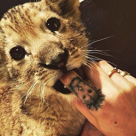 cara-delevingne-lion-cub-tattoo