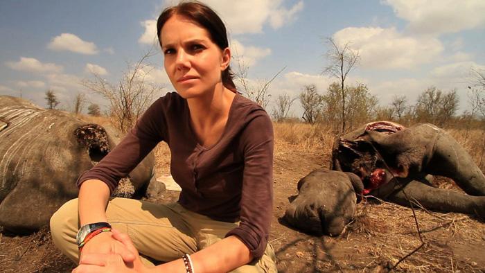 bonne-de-bod-rhino-carcasses-5050