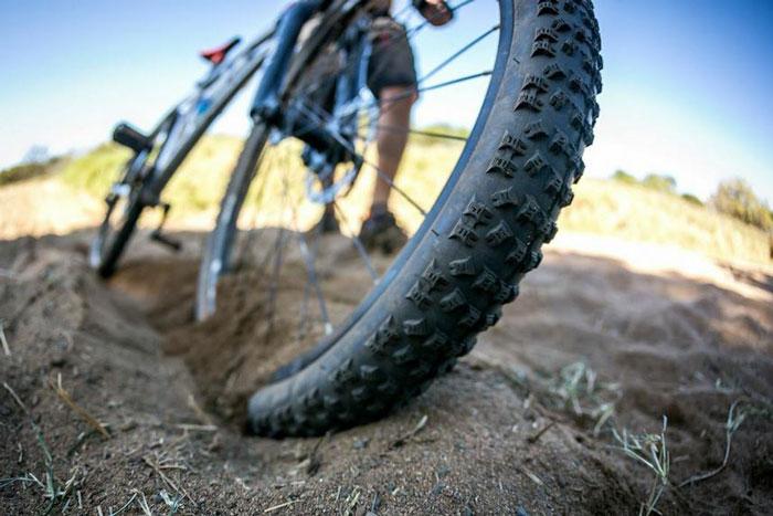 bush-bicycle-ride