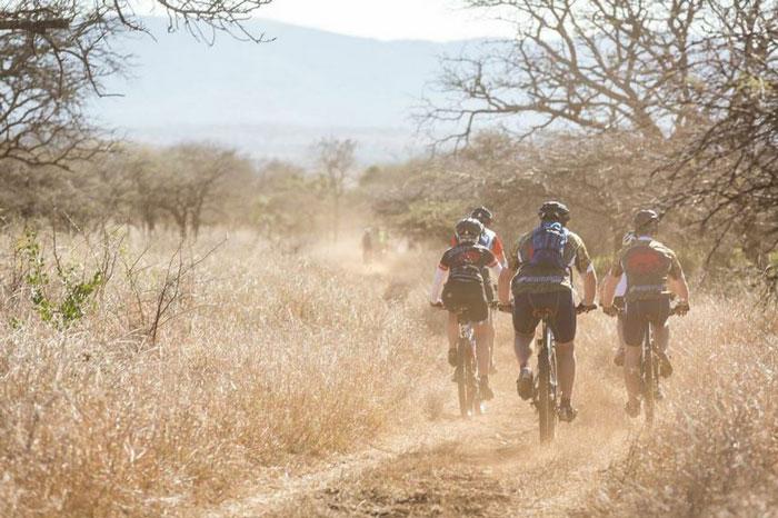 bush-cycling