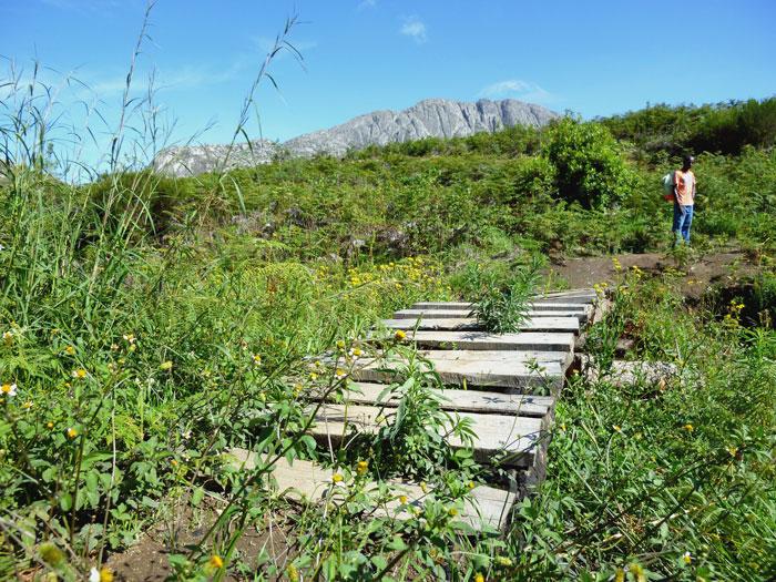 climb-mount-mulanje