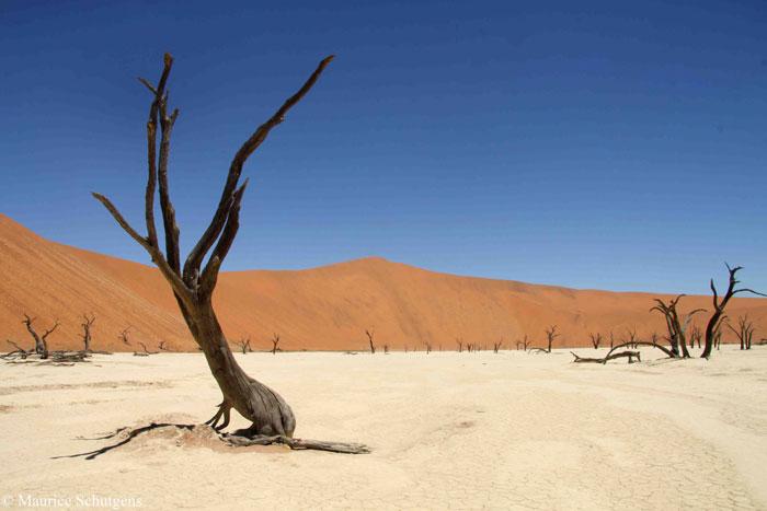 dunes-maurice-schutgens