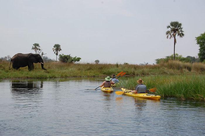 okavango kayak