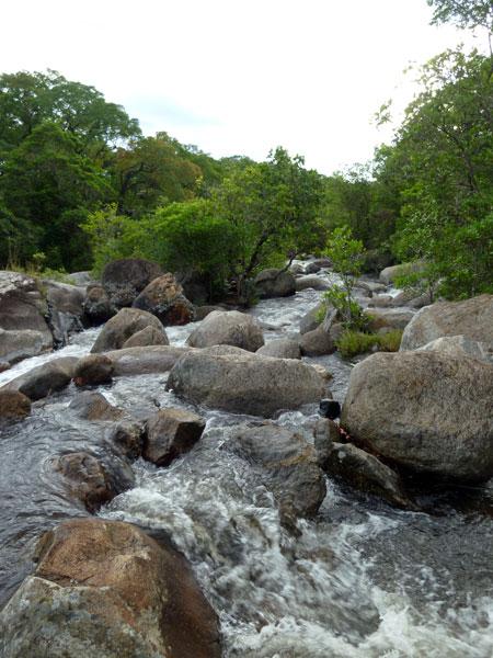malawi-mount-mulanje-river