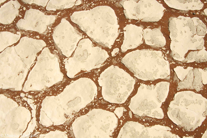 maurice-schutgens-desert