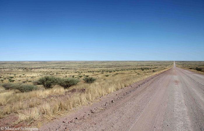 open-road-namibia