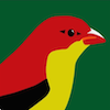 The Rare Finch Conservation Group