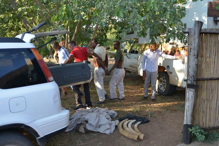 arrest selling ivory