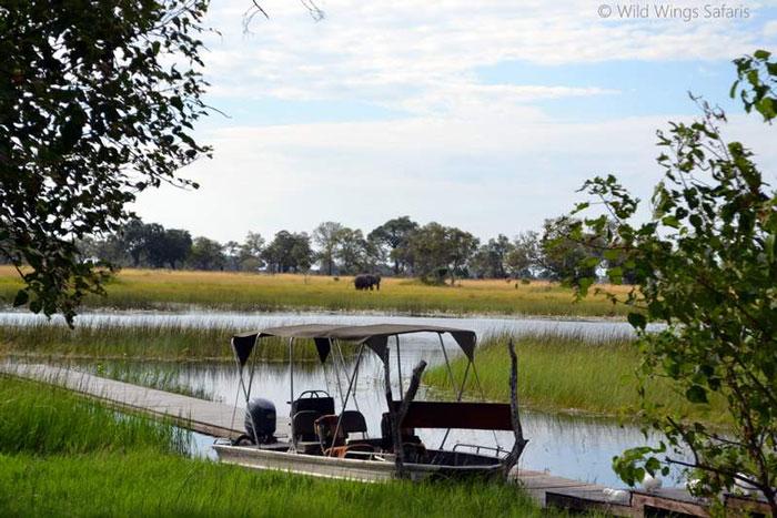 boat in the okavango