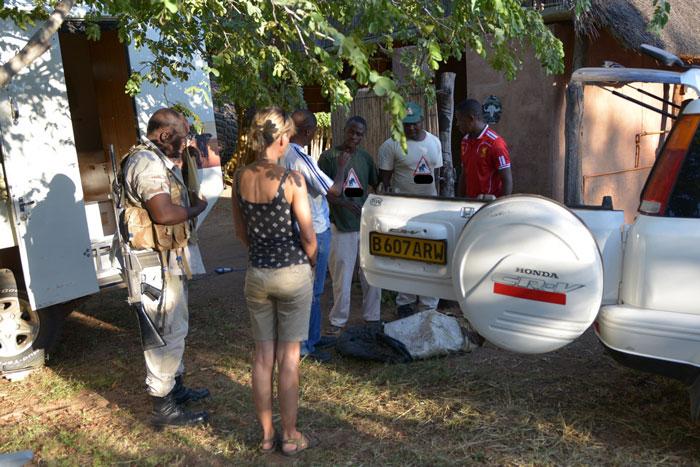 ivory bust botswana