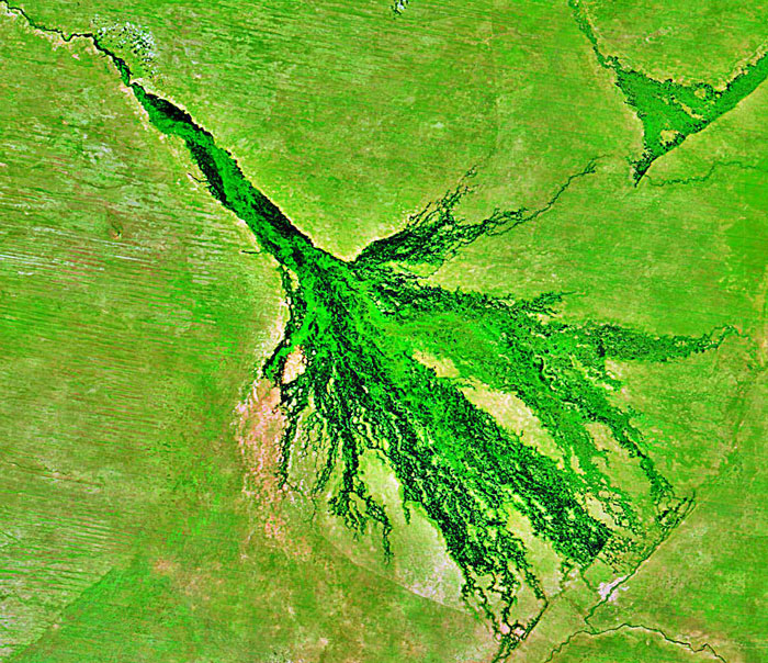 okavango from satelite