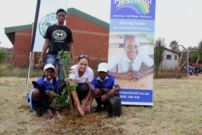 planting trees at schools