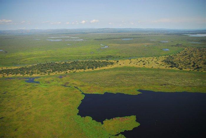 The Amazing Akagera Africa Geographic