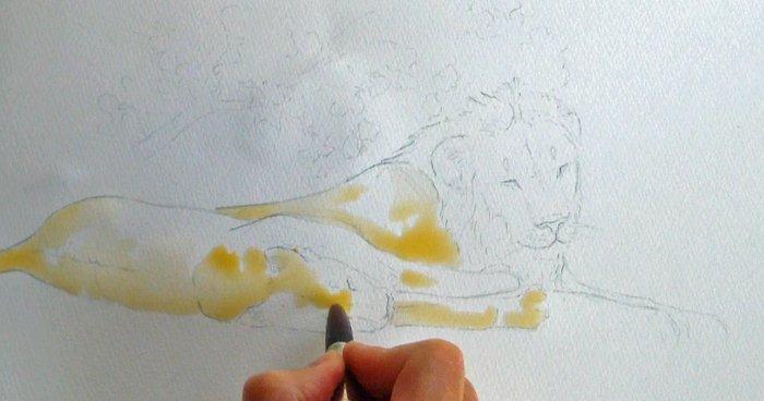 Alison-nicholls-art-safari