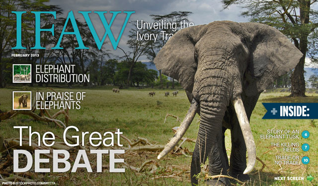 Ifaw Ivory Trade A Free Interactive Magazine Africa