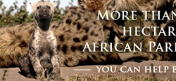 african-parks
