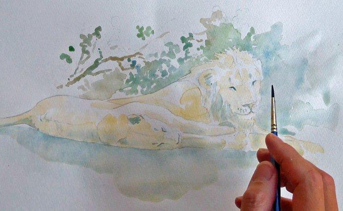 art-safari-lion-water-colour-kruger