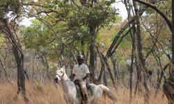 © Bangweulu Wetlands Project/ African Parks
