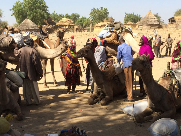 chad-camels Online Form Job Latest on philippines home-based, stay home, work home, data entry, searching for, to apply,