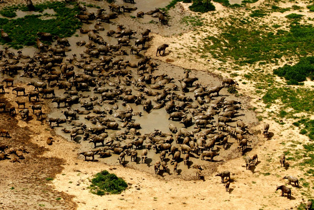 chad 8 reasons chad should be your next african adventure africa