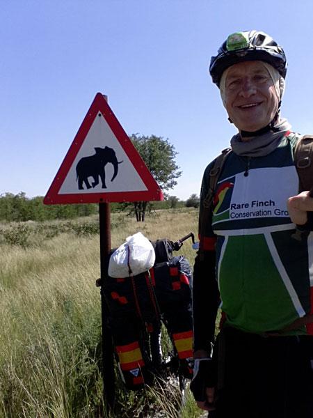cycle elephants botswana