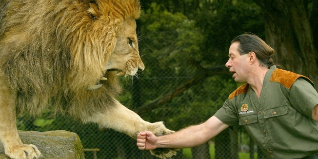 Claws Out Over Lion Man Craig Buschs New Park In South