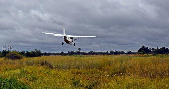 okavango-lelobu-safaris