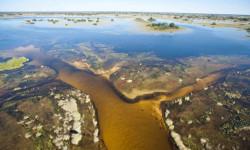 okavango-waters