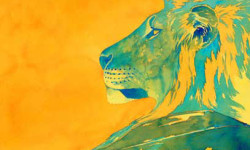 Lion, watercolor by Alison Nicholls