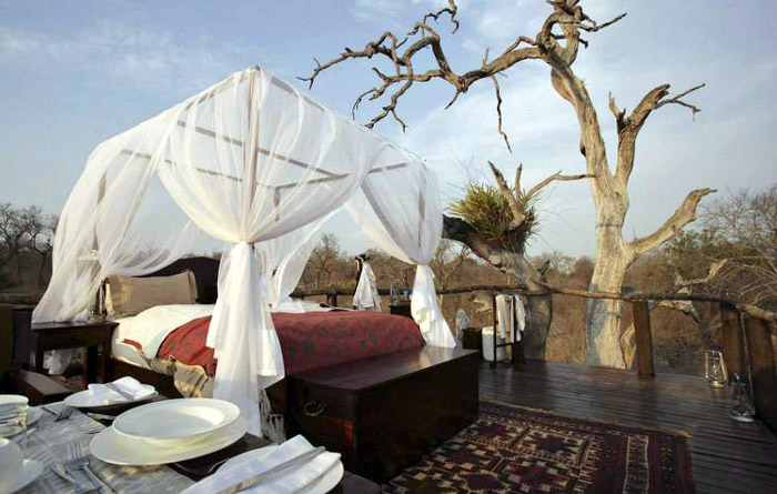 Lion-Sands-Chalkley-Tree-House