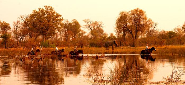 Motswiri-horse-safaris