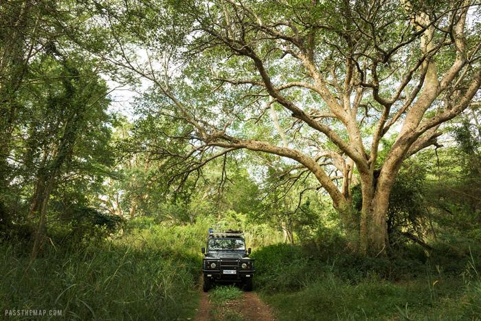 ndumo game reserve
