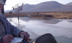 art-on-safari-francisco-hernandez