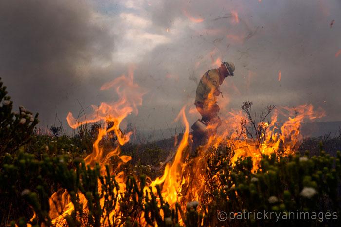 cape fire 2015