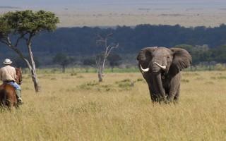 horse-riding-safari-masai-mara-kenya