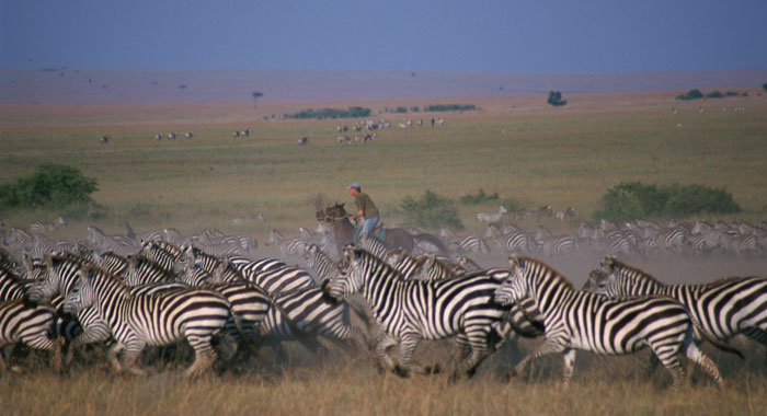 horse safari kenya
