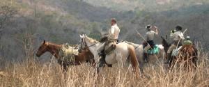 horse-safari-mavuradonha