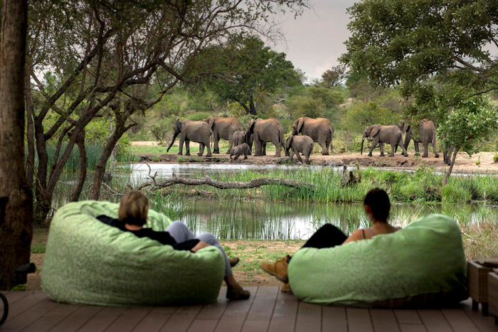 Watching elephants from a private deck