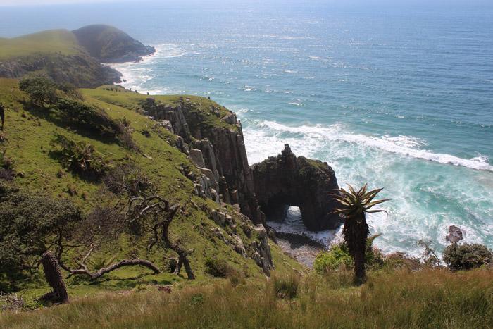 wild coast ocean