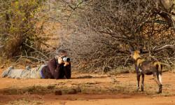 safari Laikipia