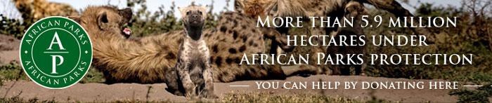 african-parks-blog-banner