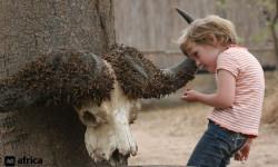 family-safari-children