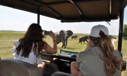 Sighting elephants in Chobe