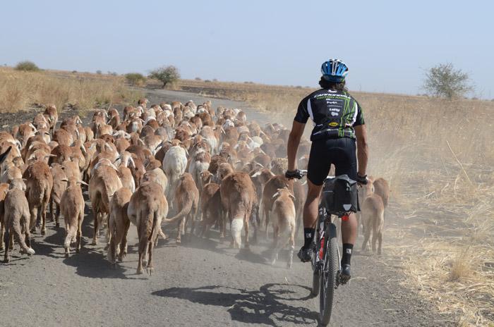 Cycling through Sudan