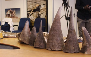 14 rhino horns were found in the luggage of Chinese couriers at the airport in March 2014. DNA tests showed 13 of the horns originated from Kunene