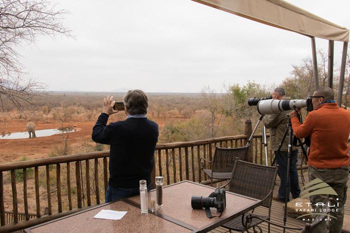 etali-safari-lodge-madikwe