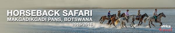 Horse Riding Botswana