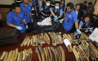 ivory seizure in Bangkok