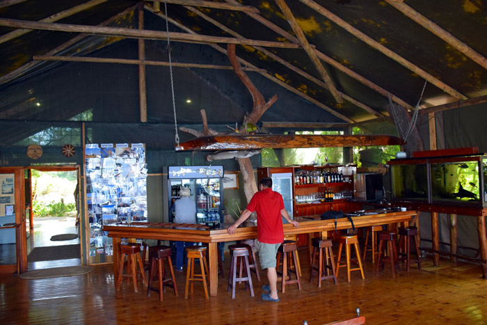 okavango-lodge-bar