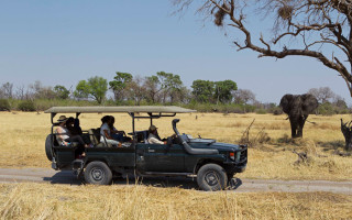 safari-specialists-botswana